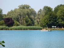 Blausee in Neulußheim