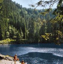 Der Glaswaldsee ist cirka 2,7 Hektar groß und bis 11 Meter tief