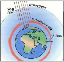 Рис. 42. Озоновый слой