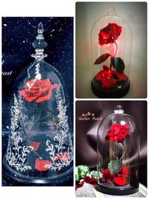 魔法の赤いバラ