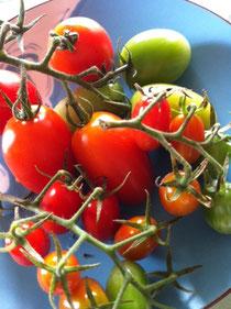 手作りの有機トマトをふんだんに!