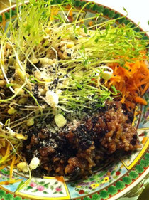 お正月反省ごはん!酵素玄米とスプラウトと人参のローフード丼ぶり