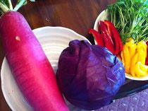 春の野菜がでてまいりました!