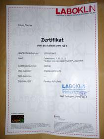 """Zertifikat über den Gentest """"vWD Typ 1"""" vom 14.02.2013"""