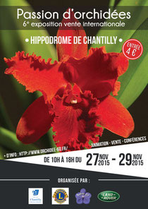Affiche Chantilly 2015