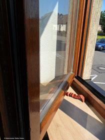 Holzlasur, Farbton: eiche