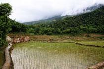 rondreis Vietnam,  juli 2012