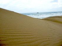砂丘より眺望