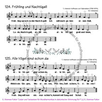 Mundharmonikanoten - Alle Vögel sind schon da