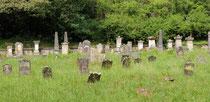 Jüdischer Friedhof in Frauenberg
