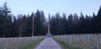 Franz.Militärfriedhof Wettstein
