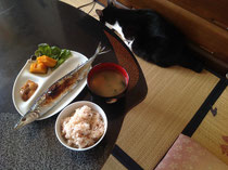 病になりにくい和の朝食