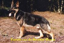 Faroek van de Broekse Hoeve