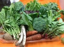 フルセットのお野菜 15点2710円
