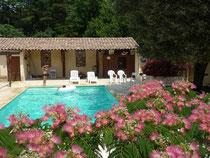 La piscine derrière l'Albizia