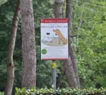 Area per cani a villa Borghese