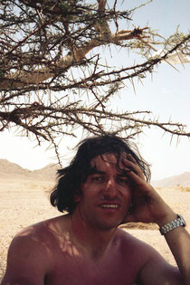 im Schatten eines Dornen-Strauchs im Sinai