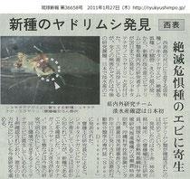 琉球新報 2011年1月27日朝刊(クリックで拡大)