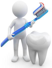 Die richtige Zahnbürste ( ©fotomek - Fotolia )