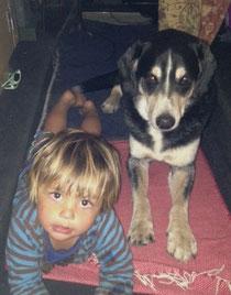 Entlebucher Sennenhund mit Kind