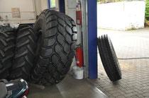 Da sieht unser Reifen richtig klein aus!