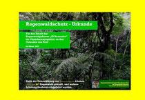 Urkunde Regenwald