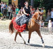 Bismarck beim Tag des Pferdes 2011 in Böheimkirchen