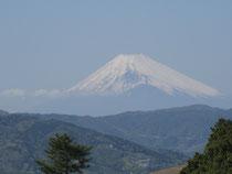 伊豆小室山から見る富士山