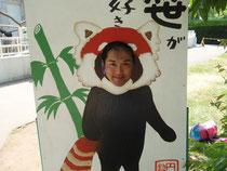 大好きなレッサーパンダになりきる私・・・