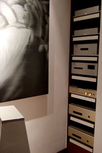 Magnificient installation perfectly complements the singular music experience...