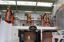 """Die """"Stills"""" der Glengoyne Distillery"""