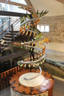 Der Whisky Baum - Glenlivit Distillery