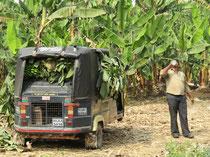 Bananentransport in Hampi