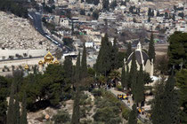 Эйлат, Экскурсии в Израиле, Израиль туризм, погода Израиль, трансферы, отдых  в Израиле,  экскурсии Израиль, тур Израиль