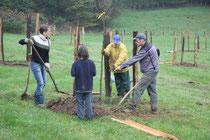 Pflanzung der Wiese in 2009