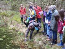 Amphibischer Ausflug mit Kindern