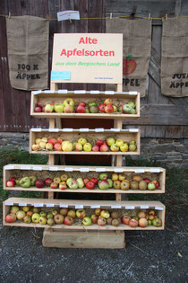 alte Obstsorten ( HU)