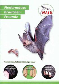 """Broschüre """"Fledermäuse brauchen Freunde"""""""
