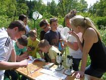 Der Schwerpunkt der Naturschutzarbeit des NABU Morsbach liegt bei der Jugendförderung. Mit den Ellinger Teichen steht den Kindern und Jugendlichen ein ideales Forschungsgelände zur Verfügung (C.Bu)