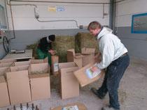 Verpackungsstation ( HU)
