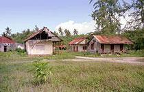 1970 - Plantation en ruine sur Diego Garcia.