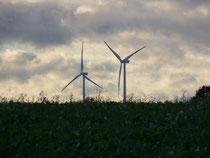 Windräder (Foto: M. Straube)