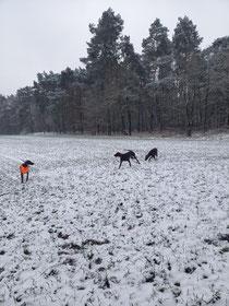 Wir freuen uns über den Schnee, auch wenn es nur ein paar Zentimeter sind 😆