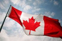 カナダで薬剤師になるには?
