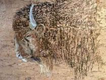 Bison-Pastell-Kork