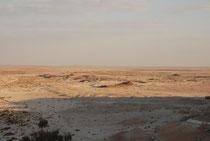 Abb. 2: Fossile Seeablagerungen (braune Hügel) im zentralen Oman (Foto T. Rosenberg)