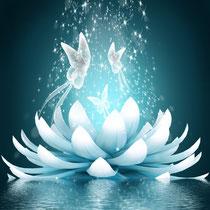 Meditación  y La Paz