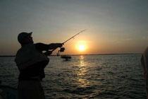 Pêche au lac de Ouarzazate