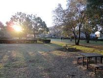 ▲野川公園の朝