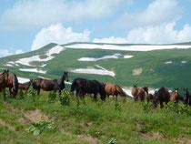 поход в горах Адыгеи